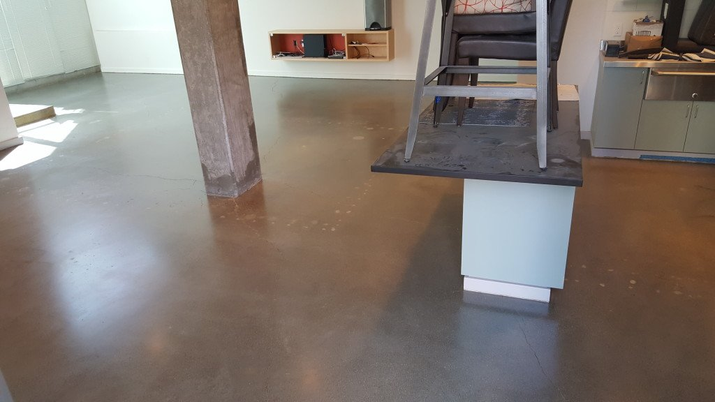 polished concrete floors bellevue