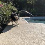 pool deck repair seattle